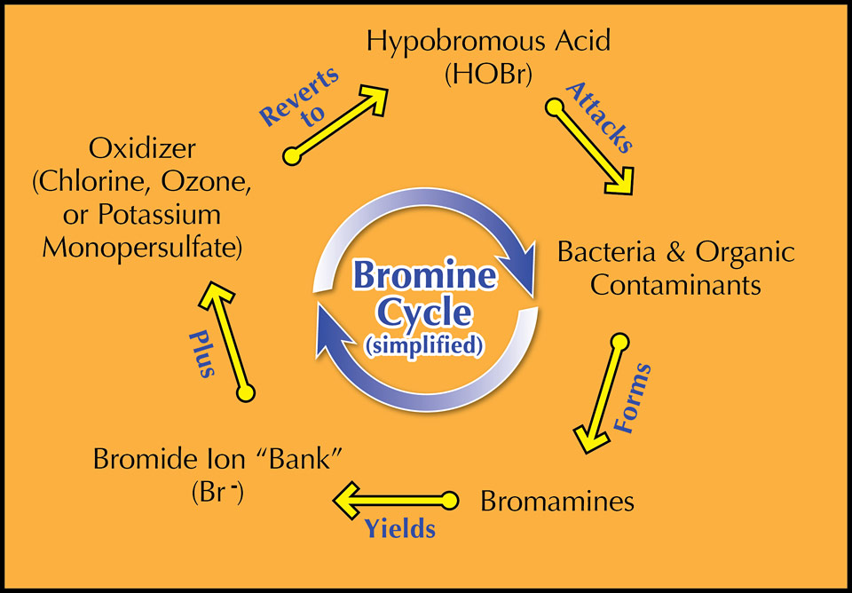 what s best for a spa chlorine or bromine